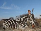 Zebra 2 - Mikael